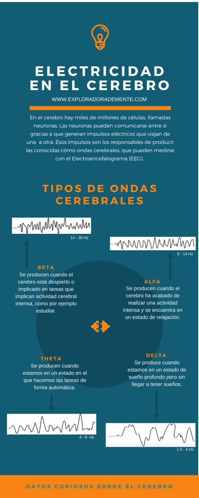 electricidad en el cerebro